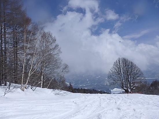 雪山  3|妙高杉ノ原スキー場のクチコミ画像