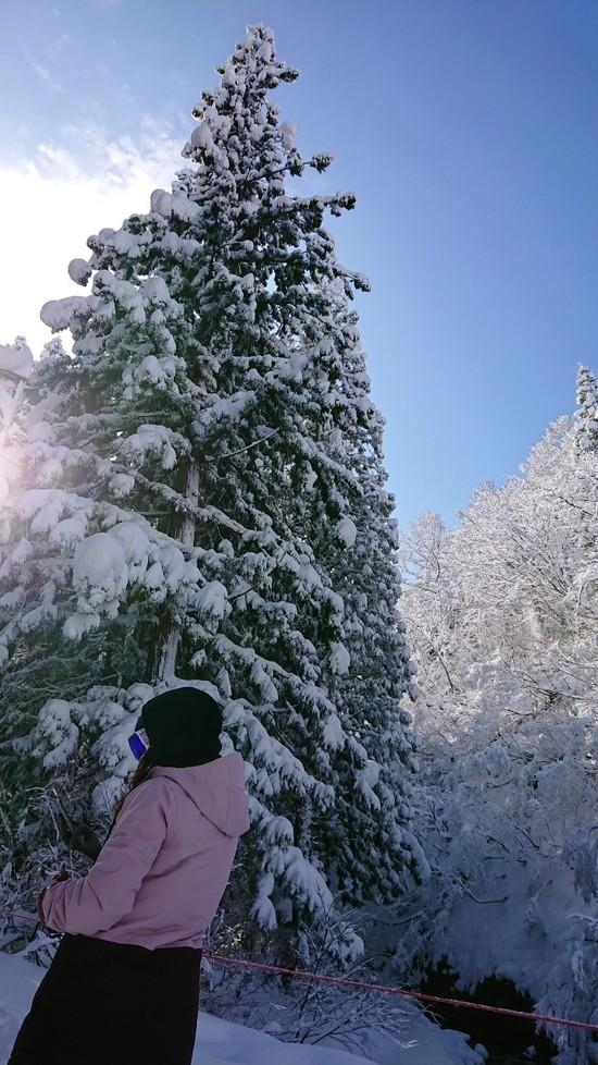 神立スノーリゾート(旧 神立高原スキー場)のフォトギャラリー5