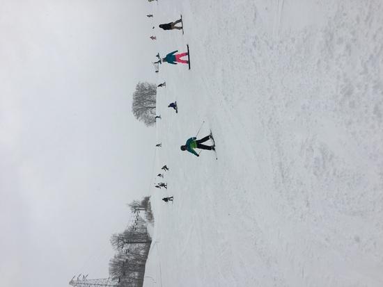 パウダーコンディション|かぐらスキー場のクチコミ画像