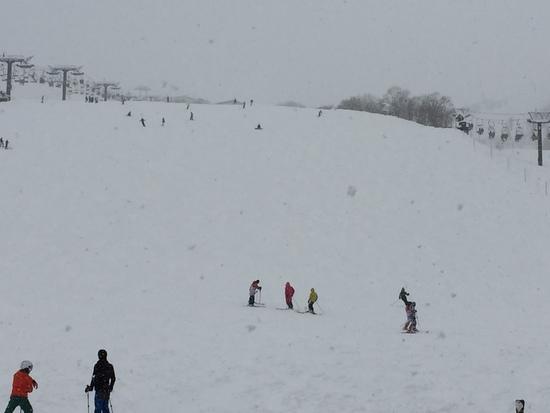 雪がいっぱい|白馬八方尾根スキー場のクチコミ画像