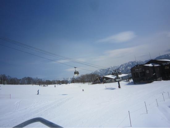広くて初心者向け|栂池高原スキー場のクチコミ画像