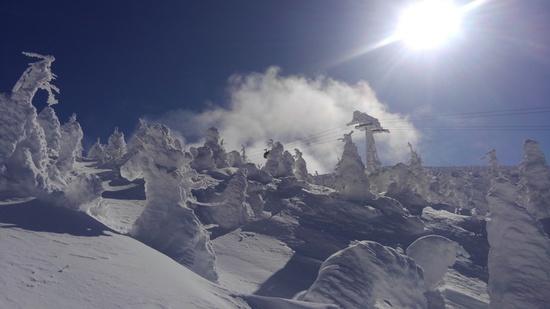 夢のような樹氷|蔵王温泉スキー場のクチコミ画像