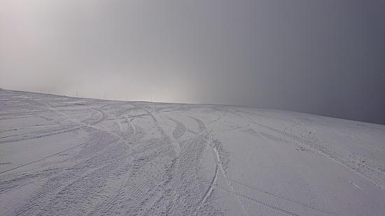 ローカルでのんびりしたスキー場|白馬岩岳スノーフィールドのクチコミ画像1