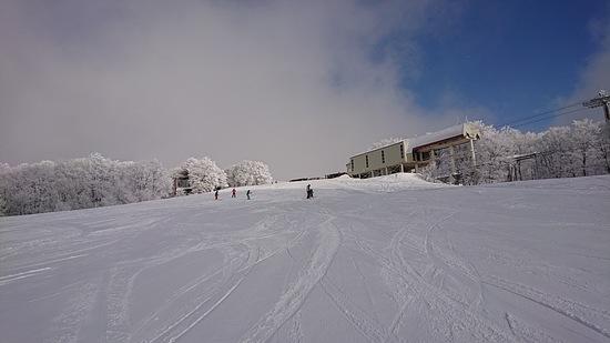 ローカルでのんびりしたスキー場|白馬岩岳スノーフィールドのクチコミ画像2