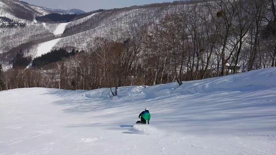 通いたくなるスキー場|タングラムスキーサーカスのクチコミ画像1
