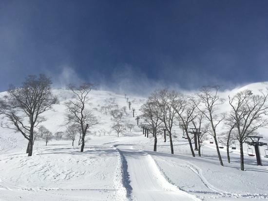 パウダースノーリセット|谷川岳天神平スキー場のクチコミ画像