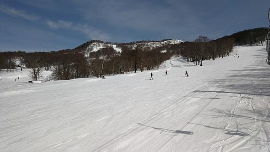 初たんばらの感想|たんばらスキーパークのクチコミ画像