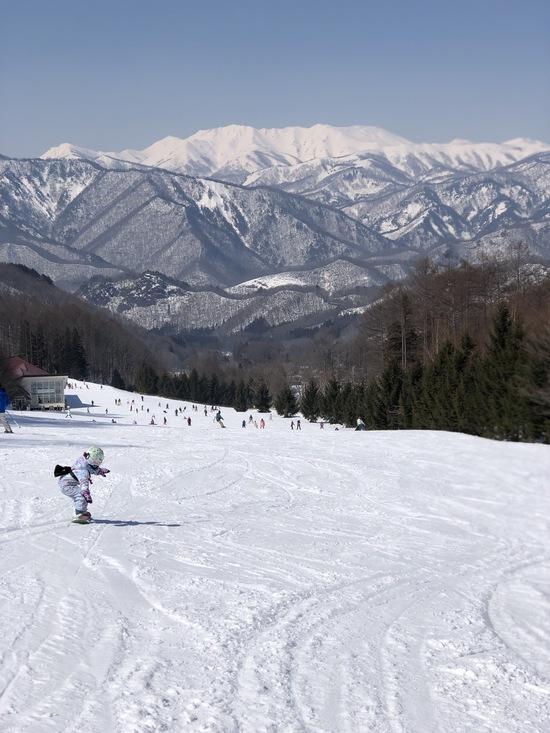 谷川岳連峰?とても綺麗でした 水上宝台樹スキー場のクチコミ画像2