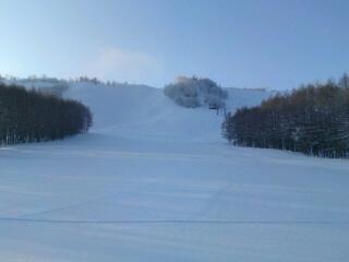 夜明け前のゲレンデ|しらかば2in1スキー場のクチコミ画像