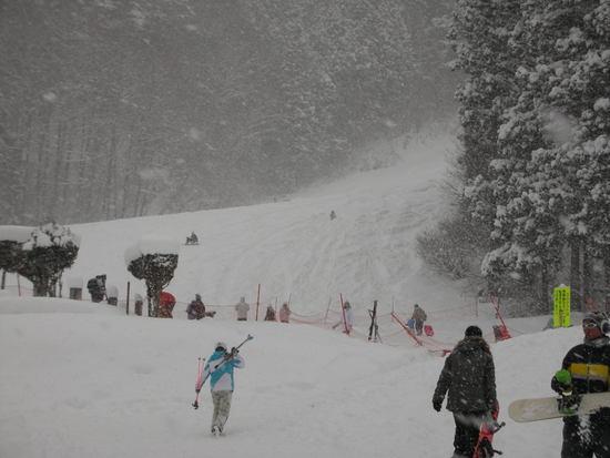 新雪の奥利根 奥利根スノーパークのクチコミ画像2