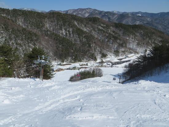 一昨日の大雪で雪はタップリありました|やぶはら高原スキー場のクチコミ画像