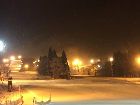 やっと雪が降った|鷲ヶ岳スキー場のクチコミ画像