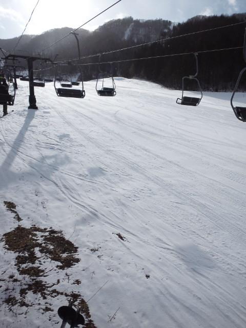 暖冬の平日ゲレンデ|水上宝台樹スキー場のクチコミ画像