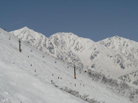 日本一のアルペンゲレンデ|白馬八方尾根スキー場のクチコミ画像