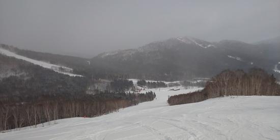 シーズン8日目|星野リゾート トマム スキー場のクチコミ画像