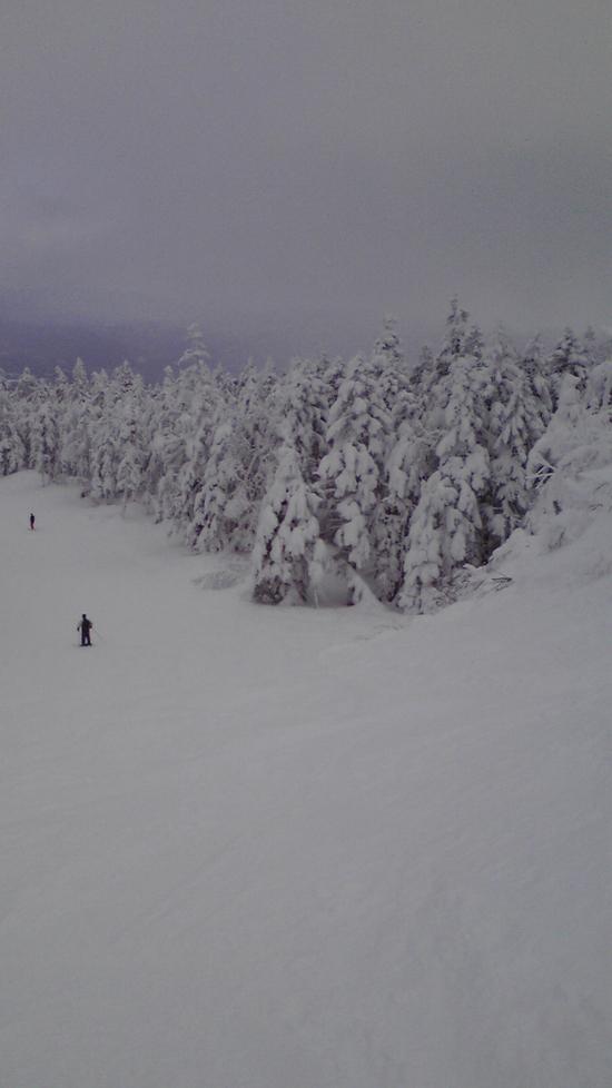 パウダースノー|パルコールつま恋スキーリゾートのクチコミ画像