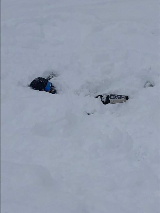 ファミリー&初心者向けスキー場 水上高原・奥利根温泉 藤原スキー場のクチコミ画像2