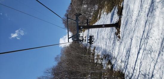 1月か!|サンメドウズ清里スキー場のクチコミ画像