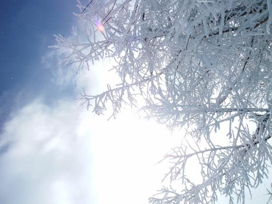 関越方面が大雪の悪天候でも・・・|菅平高原スノーリゾートのクチコミ画像