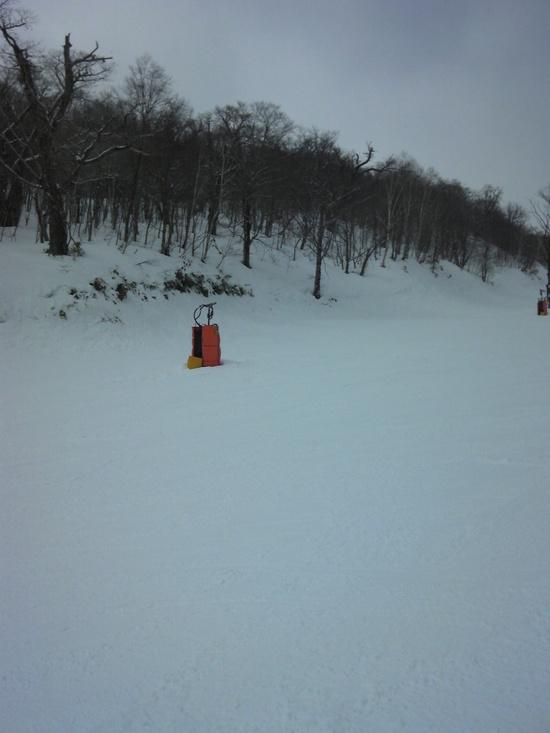 前日に雪が降り|鷲ヶ岳スキー場のクチコミ画像