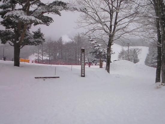 ようやく全面滑走可能|あだたら高原スキー場のクチコミ画像