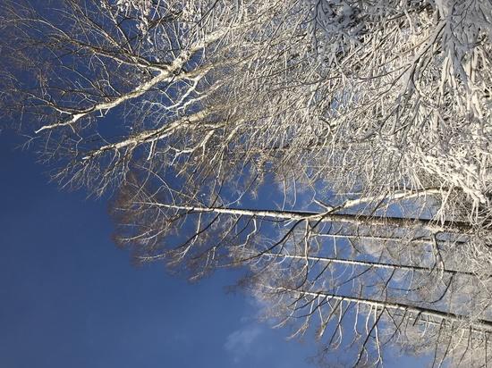 TOPシーズンなのに・・・|鷲ヶ岳スキー場のクチコミ画像3