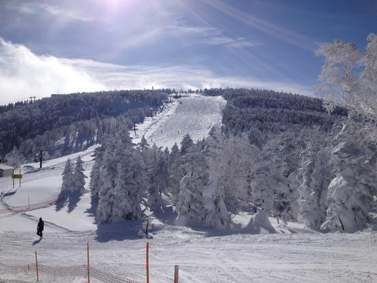 雪質サイコーでした|奥志賀高原スキー場のクチコミ画像2