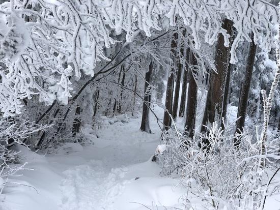 石鎚スキー場のフォトギャラリー1