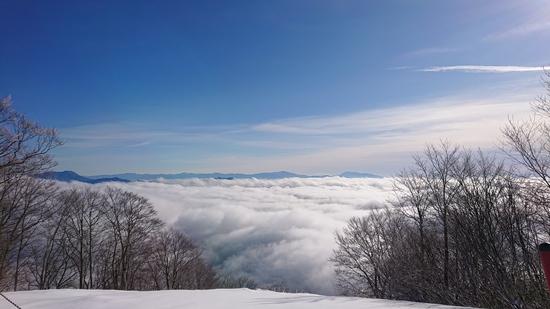雪不足を痛感!|Hakuba47 ウインタースポーツパークのクチコミ画像