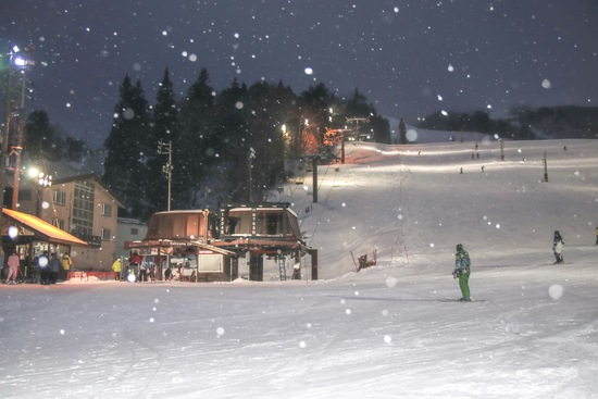 ナイターと雪|白馬八方尾根スキー場のクチコミ画像
