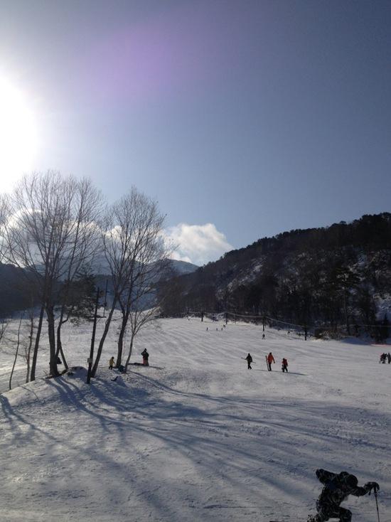 ウチの家族の定番です。 裏磐梯スキー場のクチコミ画像