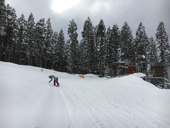 最後の雪|ニュー・グリーンピア津南スキー場のクチコミ画像1