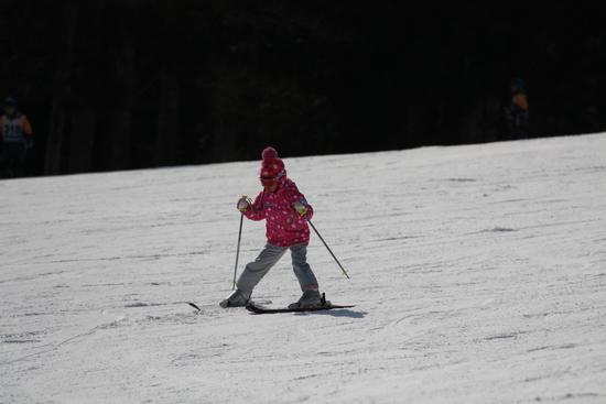 スキーレッスンの丁寧さは、八ヶ岳で随一