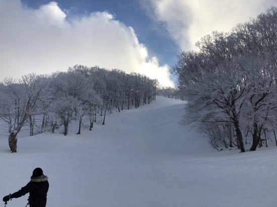 きれいな景色|斑尾高原スキー場のクチコミ画像1