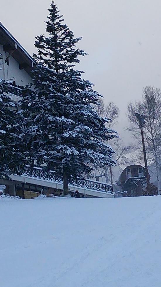 パウダースノー良い♪|会津高原たかつえスキー場のクチコミ画像