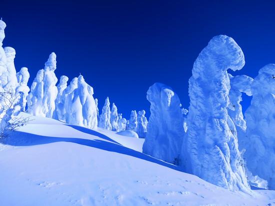 青空の下、樹氷見物|蔵王ライザワールドのクチコミ画像1