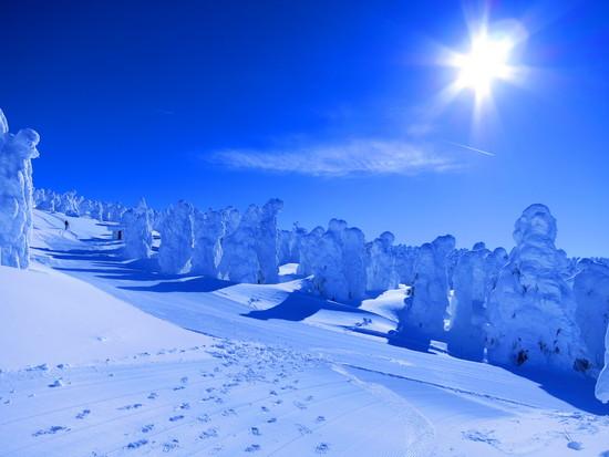 青空の下、樹氷見物|蔵王ライザワールドのクチコミ画像2