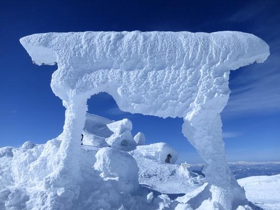 青空の下、樹氷見物|蔵王ライザワールドのクチコミ画像3