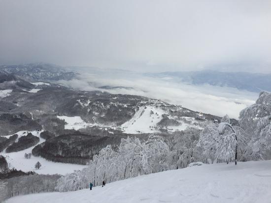 mada-pow最高!|斑尾高原スキー場のクチコミ画像
