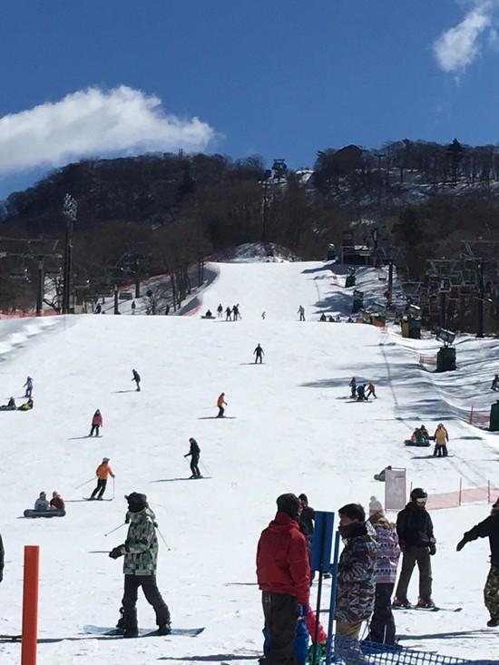家族4人でスキー 軽井沢プリンスホテルスキー場のクチコミ画像2