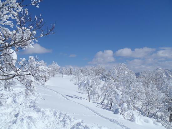 最高のパウダーと非圧雪 野沢温泉スキー場のクチコミ画像