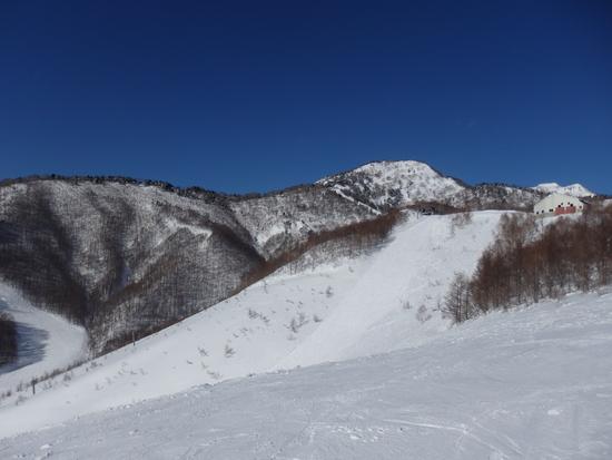 先週の雪でゲレンデ状態が改善されていました|オグナほたかスキー場のクチコミ画像3