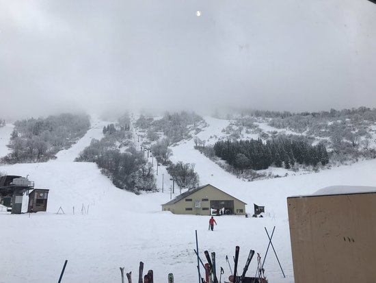 雪が豊富|シャルマン火打スキー場のクチコミ画像