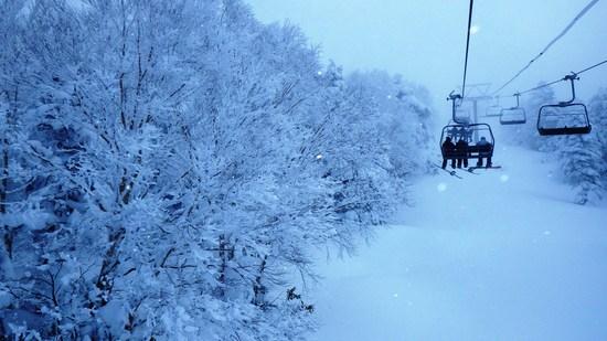 激パウダー|竜王スキーパークのクチコミ画像