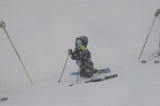 あいにくの天気でしたが…|ひるがの高原スキー場のクチコミ画像