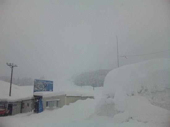 穴場スキー場|さかえ倶楽部スキー場のクチコミ画像