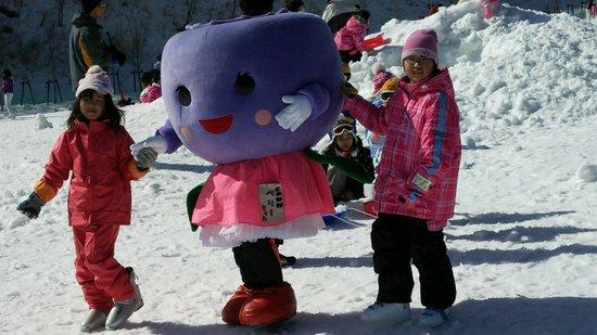 茶臼山高原スキー場のフォトギャラリー4