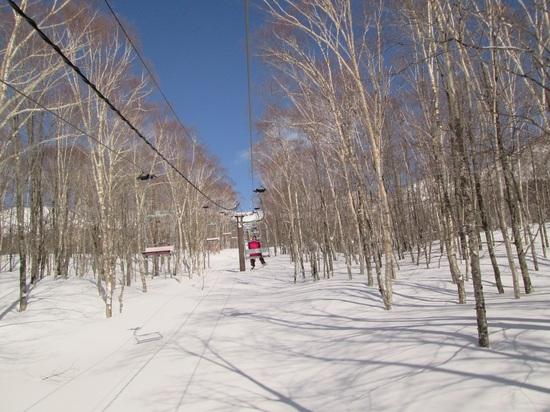 晴天だ|栂池高原スキー場のクチコミ画像