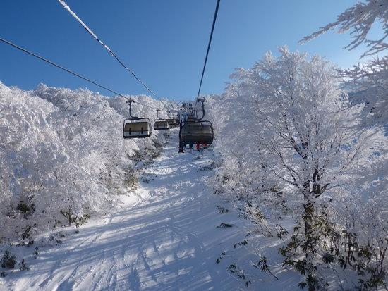 樹氷がきれい|箕輪スキー場のクチコミ画像