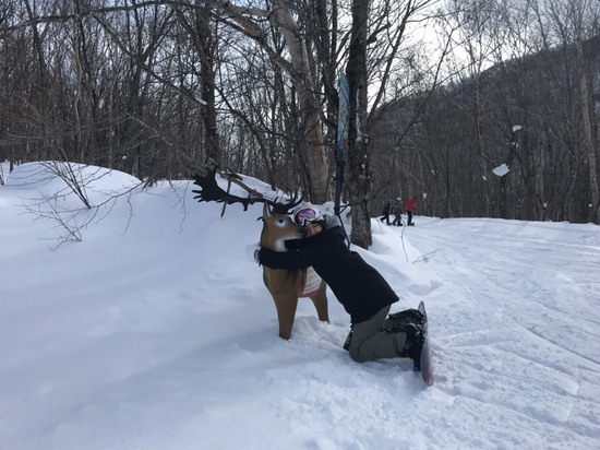 また来るよー|スプリングバレー泉高原スキー場のクチコミ画像